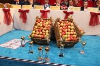 GÖKSEL BAKTAGIR - 14. 'Altın Elma'nın Finali Yapıldı