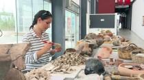 ÇENE KEMİĞİ - 8 Bin Yıllık Çipura Kalıntısı Bulundu
