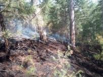 Balıkesir'deki Orman Yangını Kısa Sürede Söndürüldü