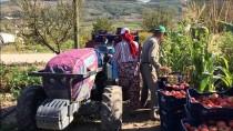 BEYAZ EŞYA - Evinde Anne, Tarlada Çiftçi, İş Yerinde Patron