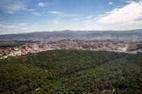 Gördes'in Yüzde 51'İ Orman Alanı
