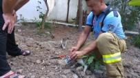 Kafası Konserve Tenekesine Sıkışan Kediyi İtfaiye Kurtardı