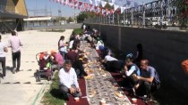 EXPO - Van'da Balık Festivali Düzenlendi