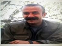Gri Listedeki MLKP'li Terörist Öldürüldü