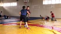 MİLLİ GÜREŞÇİ - Milli Güreşçiler, Balkanlar'da Şampiyonluk Kovalayacak