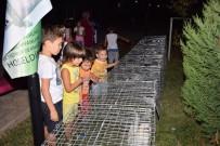 Sultan Tavukları Çocukları Cezp Etti