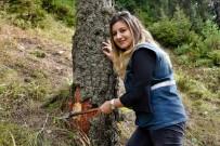 Zigana'nın Ormanları Ondan Soruluyor