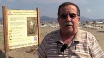 EĞİTİM DERNEĞİ - Akdeniz Ve Ege Sahillerinin 'Gelini' Plajları Süslüyor