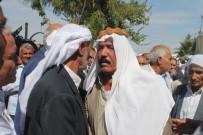 ŞANLIURFA MİLLETVEKİLİ - Aşiretlerin 'Arazi' Husumeti Barışla Bitti
