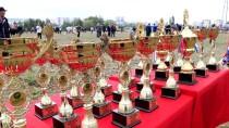 ALI ARSLAN - Samsun'da Rahvan At Yarışları