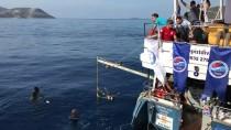 ULAŞ AKHAN - Uluslararası Serbest Dalış 'Kaş Başka' Açık Yarışları Tamamlandı