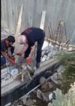 YAVRU KÖPEK - Yavru Köpeği İtfaiye Ekipleri Kurtardı