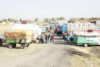 Ağrı'da Kışın 1 Liraya Satılan Saman 30 Kuruştan Satılıyor