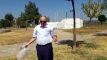 Belediyeye Kızan Meclis Üyesi Çöp Topladı