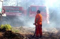 Bursa'da 2 Orman Yangını Çıktı, Ekipler Anında Müdahale Etti