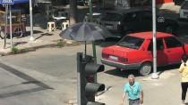 TRAFİK IŞIĞI - İzmir'de Kumruya Şemsiyeli Koruma