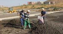 SIIRT BELEDIYESI - Siirtli Çiftçilerin Gübresi Belediyeden