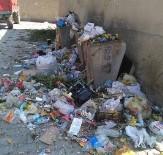 Tavşanlı'nın Göbel Köyü'nde Çöp Rezaleti