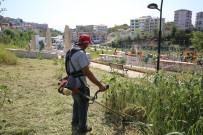 PİKNİK ALANI - Park Ve Bahçeler Güzelleşiyor