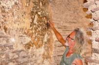 TARIHÇI - Arkeoloji Tarihine Işık Tutacak Keşif