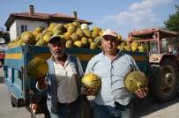 Çiftçiler Tütüncülüğü Bırakıp Kavuna Yöneliyor