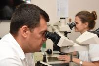 ÇOCUK HASTANESİ - Ege Üniversitesi İlaç Araştırmalarında Da Dikkat Çekiyor