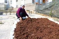 Kahramanmaraş'ta Kadın Girişimciler İçin Program