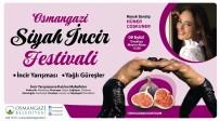 Osmangazi'de Siyah İncirler Yarışacak