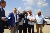 MUSTAFA SAVAŞ - Vali Köşger 'Serbest Bölge' İçin Yer İncelemesinde Bulundu