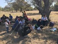 GÜLPıNAR - Çanakkale'de 67 Mülteci Yakalandı