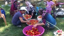 YEŞILYAYLA - Devlet Desteğiyle Çiftçilik Yapıp Evini Geçindiriyor