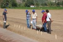 Eğirdir Fidanlık Müdürlüğü İle Batı Akdeniz Ormancılık Araştırma Enstitüsü'nden Ortak Çalışma