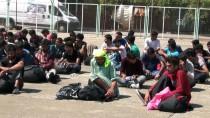 GÖCEK - Muğla'da 73 Düzensiz Göçmen Yakalandı