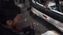 Otomobilde Mahsur Kalan Kedi Kurtarıldı