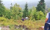 Yoldan Çıkan Otomobil Şarampole Yuvarlandı Açıklaması 4 Yaralı