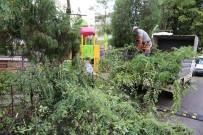 Bartın Belediyesinden Parklarda Temizlik Çalışmaları