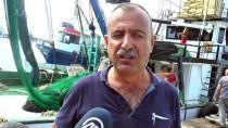 GıRGıR - Batı Karadeniz'de Balık Bolluğu