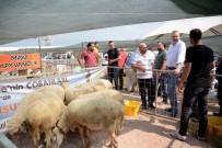 Çobanlar Karacabey'de Buluştu