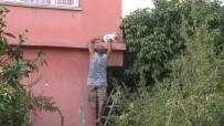 Evin Balkonunda Mahsur Kalan Kediyi Vatandaşlar Kurtardı