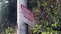 MUSTAFA ALTıNTAŞ - Gölcük'te Şarbon Şüphesine Geçici Karantina