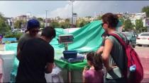 ŞEHİT AİLELERİ - Kartal'da Kilosu 1 Liradan Hamsi Satışı