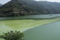 ELEKTRİK ENERJİSİ - Suat Uğurlu Baraj Gölü'nde Alg Patlaması