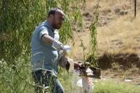 TURİZM CENNETİ - Turizm Alanı Tabiat Parkında Çöp Topladılar