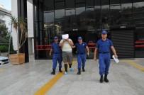 MAHMUTLAR - Uyuşturucu Taciri Tutuklandı