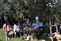 Arda Türkmen Zeytin Festivaline Konuk Oldu