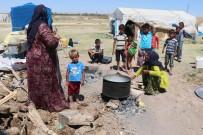 TARIM İŞÇİSİ - Çoluk Çocuk Tarlalarda Çalışıp, Çadırlarda Yaşıyorlar