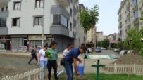 FATIH DEMIR - Iğdır'da Sokak Hayvanları Unutulmadı
