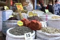 KUŞBURNU - Şifalı Bitkiler Tehlike Arz Edebiliyor
