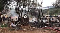 SARIYER - GÜNCELLEME 2 - Büyükada'da Yangın