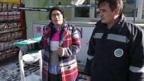 Bilecik'te ''Sıfır Atık'' Projesiyle Sokak Hayvanları Barındırılıyor